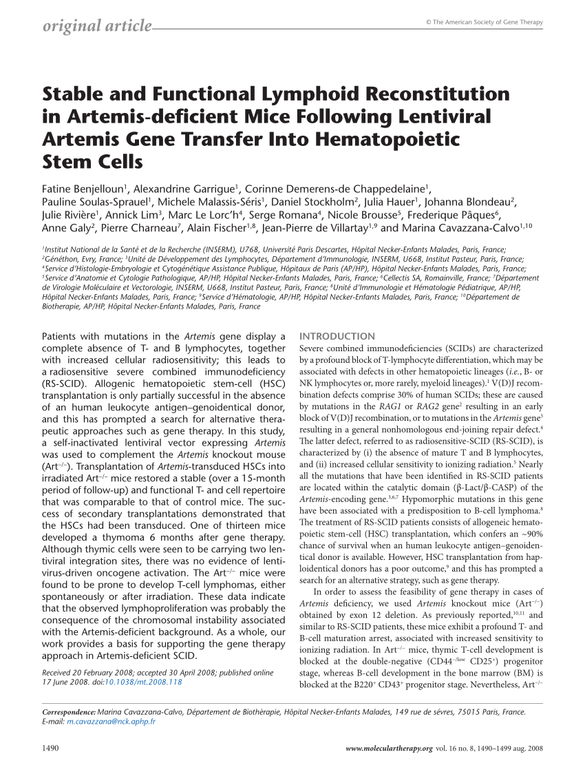 pdf stable and functional lymphoid reconstitution in artemis deficient mice following lentiviral artemis gene transfer into hematopoietic stem cells