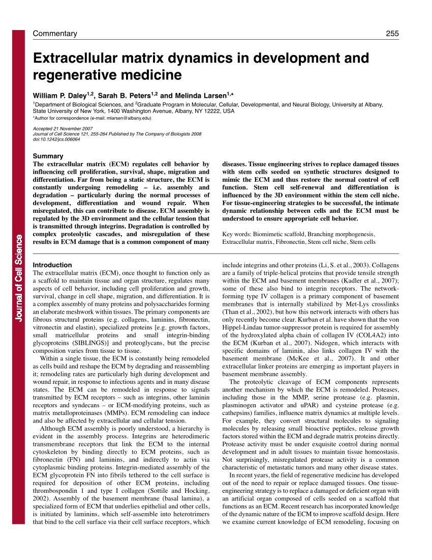 medium resolution of  pdf extracellular matrix dynamics in development and regenerative medicine