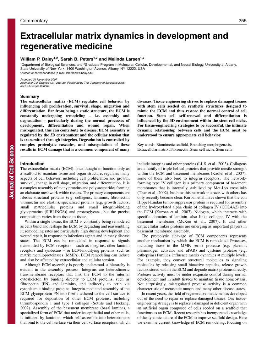 hight resolution of  pdf extracellular matrix dynamics in development and regenerative medicine