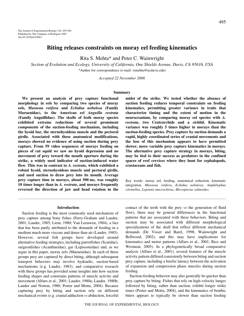hight resolution of  pdf biting releases constraints on moray eel feeding kinematics