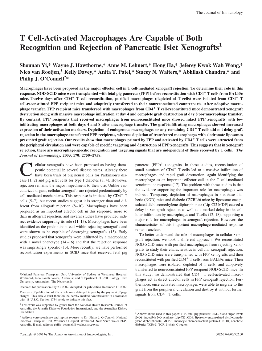 hight resolution of representative rt pcr analysis of intracellular activation marker gene download scientific diagram