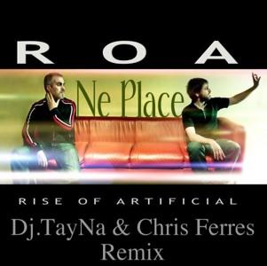 roa ne place remix