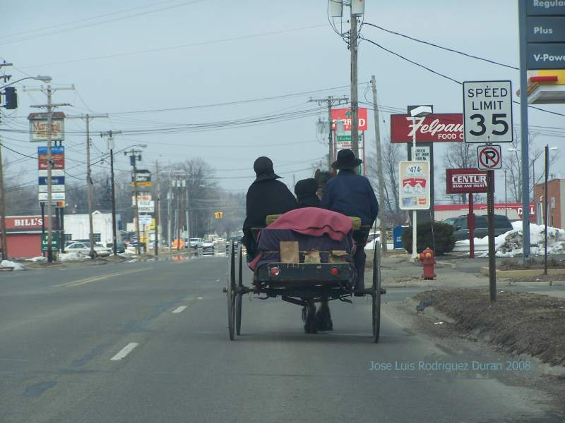 amish in town a