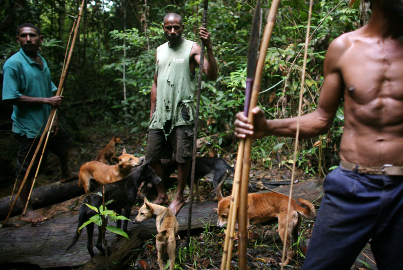 Hunting Party, A Photo From Manus, West Trekearth
