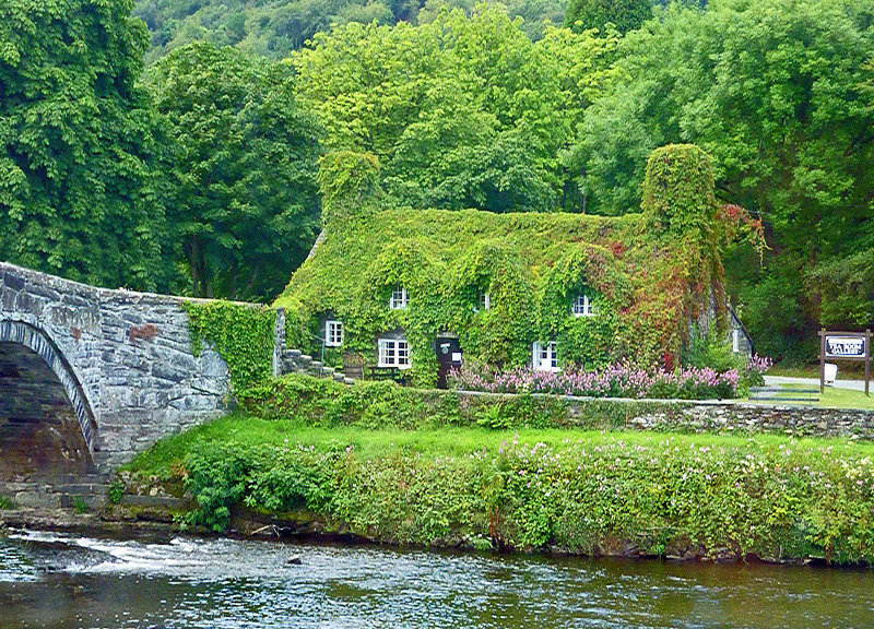 Fall Wooded Wallpaper Ivy Covered Cottage A Photo From Conwy Wales Trekearth