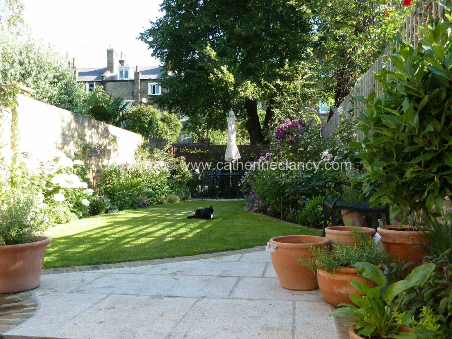 Victorian North Facing Garden Garden Design London Catherine