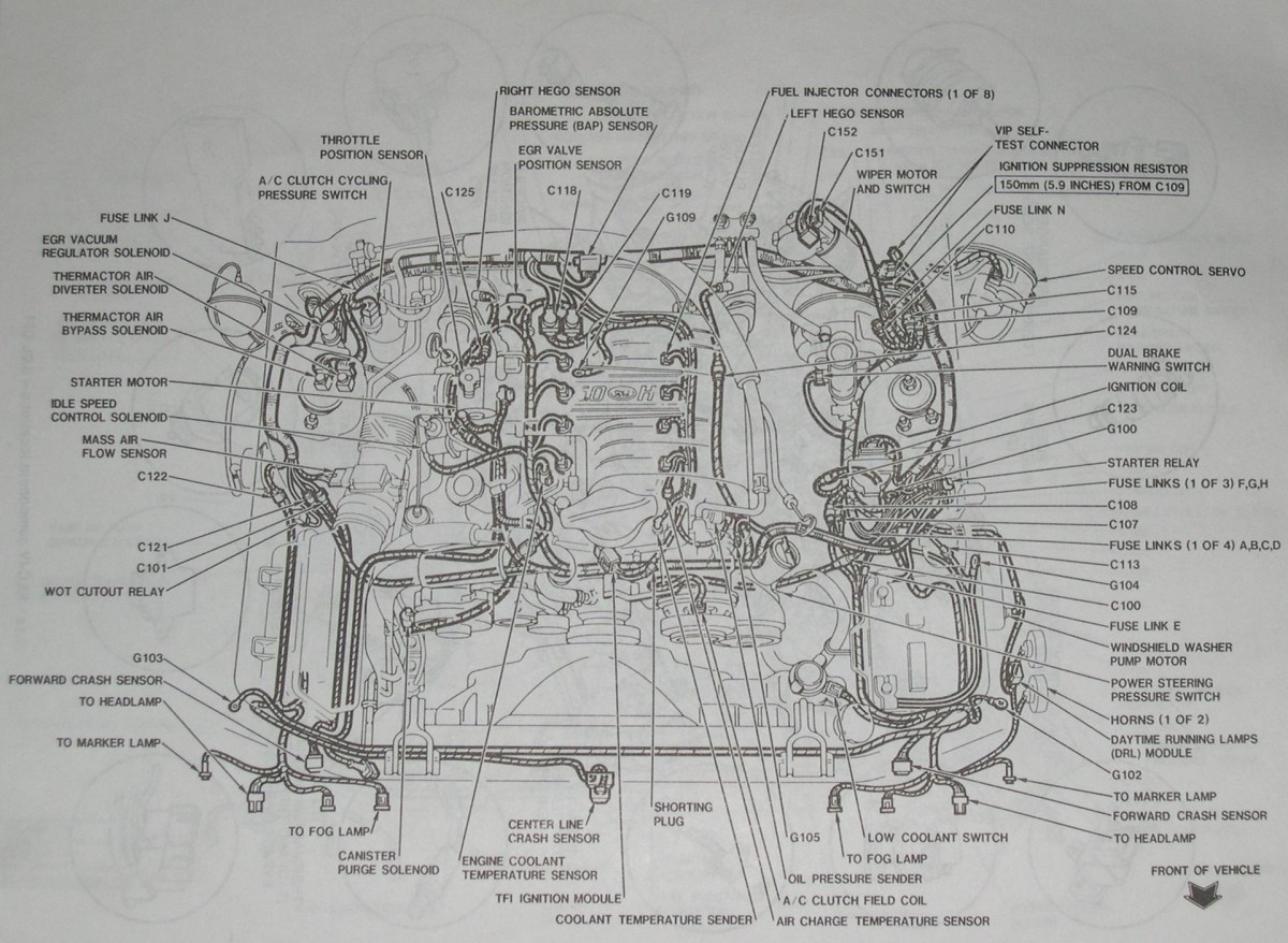 94-95 Mustang 5.0 Detailed Mustang Engine Layout
