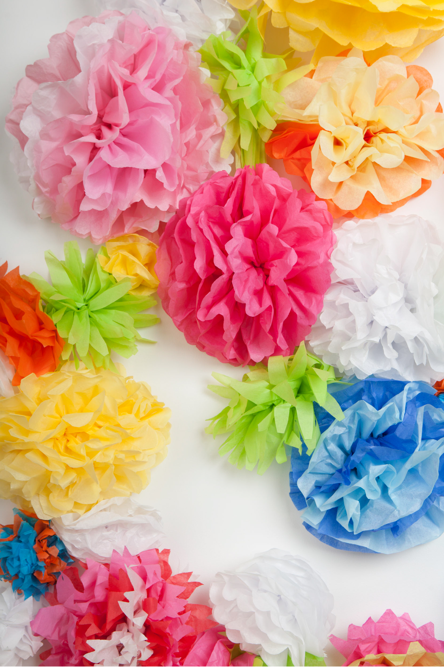 Tri Color Tissue Paper Flowers Hey Let S Make Stuff