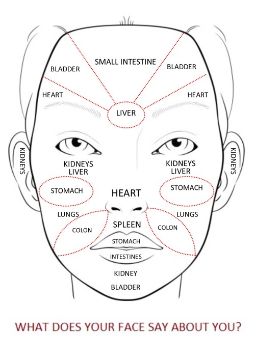 small resolution of i like this one because a lot of chinese face maps like the very first one i showed show the cheek area as lungs and i can just imagine all the people
