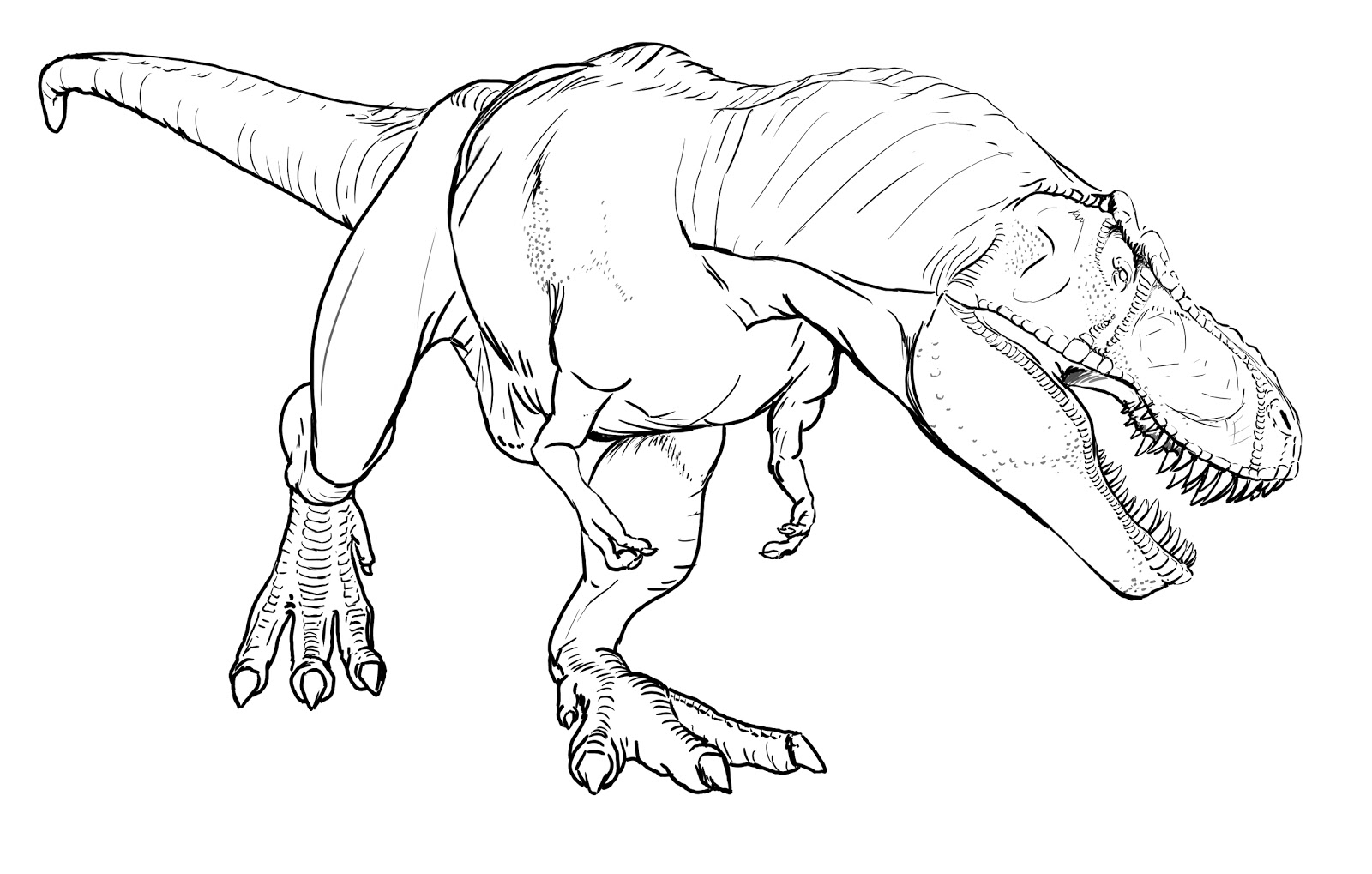 hight resolution of trex coloring pages