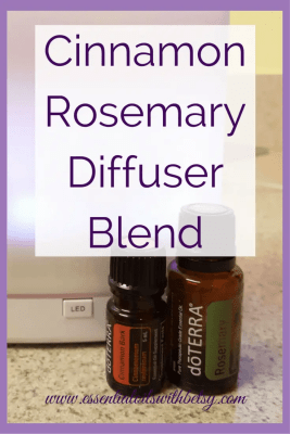 Holiday Essential Oil Diffuser Blends - Essential Oils ...