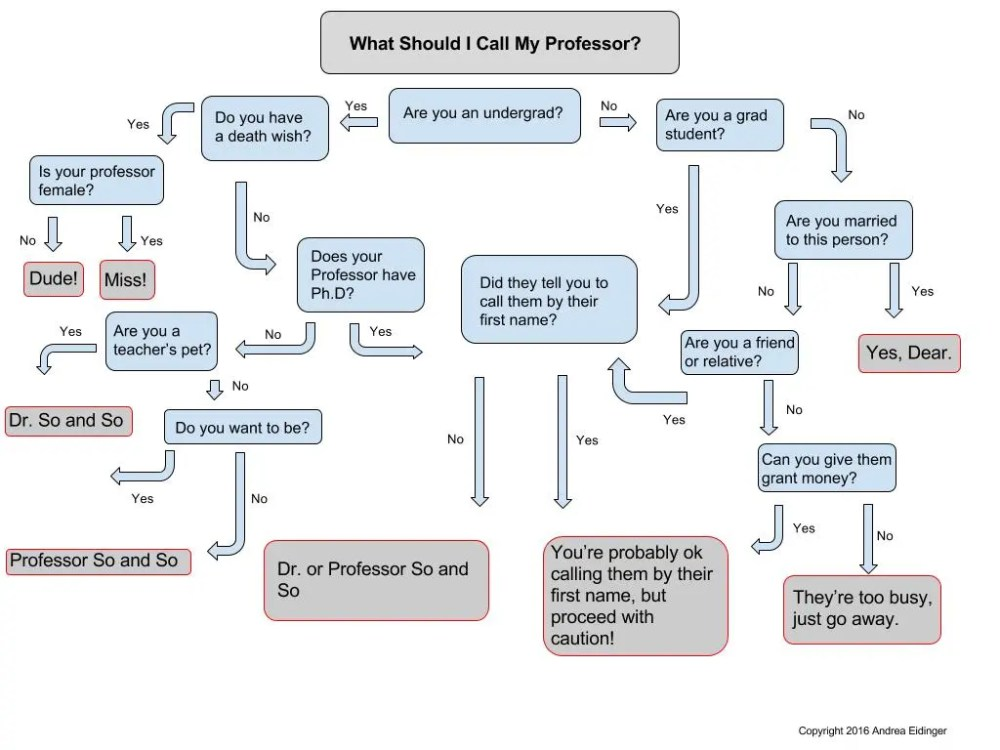 medium resolution of what to call your professor flow chart