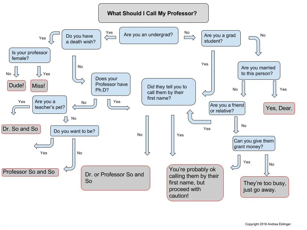 hight resolution of what to call your professor flow chart