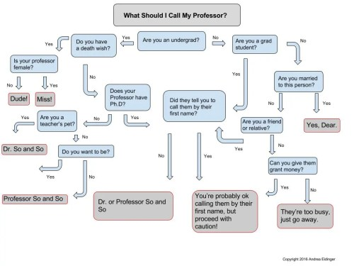 small resolution of what to call your professor flow chart