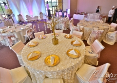 chair covers and more houston covers-n-more inc. tx chaircovers n inc 8520 sweetwater ln b 15 77037