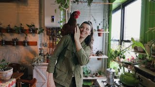 Living with 700+ Houseplants and a Hen in Brooklyn, NYC 🌿🐥   House Plant Tour