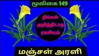 Cascabela thevetia|மஞ்சள் அரளி|manjal arali|yellow arali plant|Alasal
