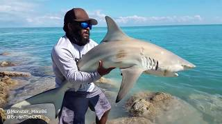 What Type of SHARK Did We Catch? Monster Mike Fishing