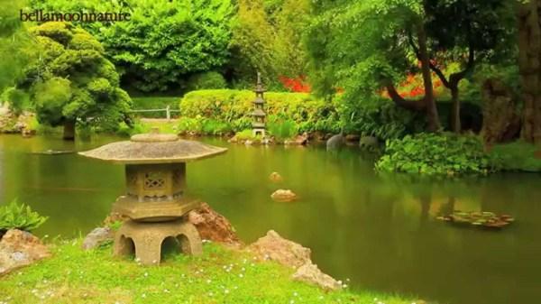 japanese tea garden golden gate