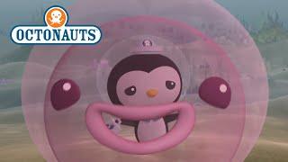 Octonauts - Jumpin' Jellyfish!