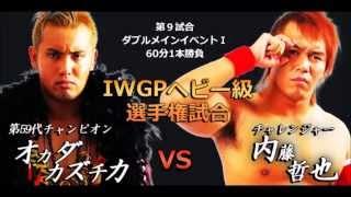 NJPW WRESTLE KINGDOM 8 (2014) FINAL CARD