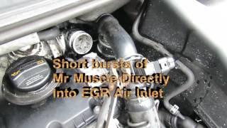 Clean EGR Valve Decarbonize Turbo DPF MPG Limp Mode Mr Muscle VW 1.9TDI Sharan Galaxy Alhambra