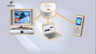 Ruckus Wireless MediaFlex