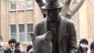 Unveiling of statue depicting Hachi and his owner