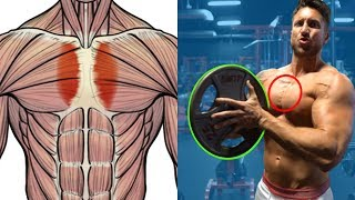 5 Forgotten ″INNER CHEST″ Exercises To BEEF UP Your Pecs