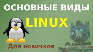 Какой бывает Linux? Основные виды, объяснение для новичков