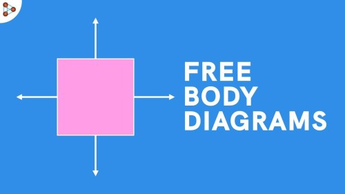 small resolution of body plane diagram unlabeled
