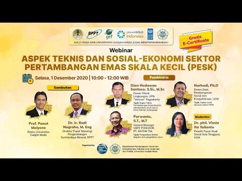 Aspek Teknis dan Sosial-Ekonomi Sektor Pertambangan Emas Skala Kecil (PESK)