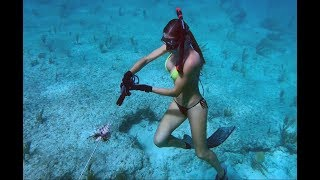 BAHAMAS Adventure above & below the water!