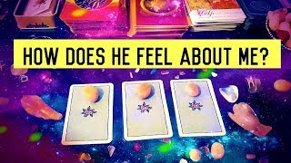 HOW DOES HE FEEL ABOUT ME? ❤️ Pick A Card Love Relationship Reading Timeless
