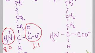 Effect of pH and pKa on Amino Acid Structure