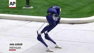 ″Cassie″ Two-Legged Walking Robot From Agility Robotics - Made For Search & Rescue Efforts.
