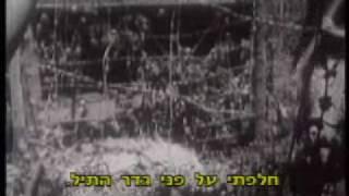 The Spielberg Jewish Film Archive - Tomorrow's A Wonderful Day