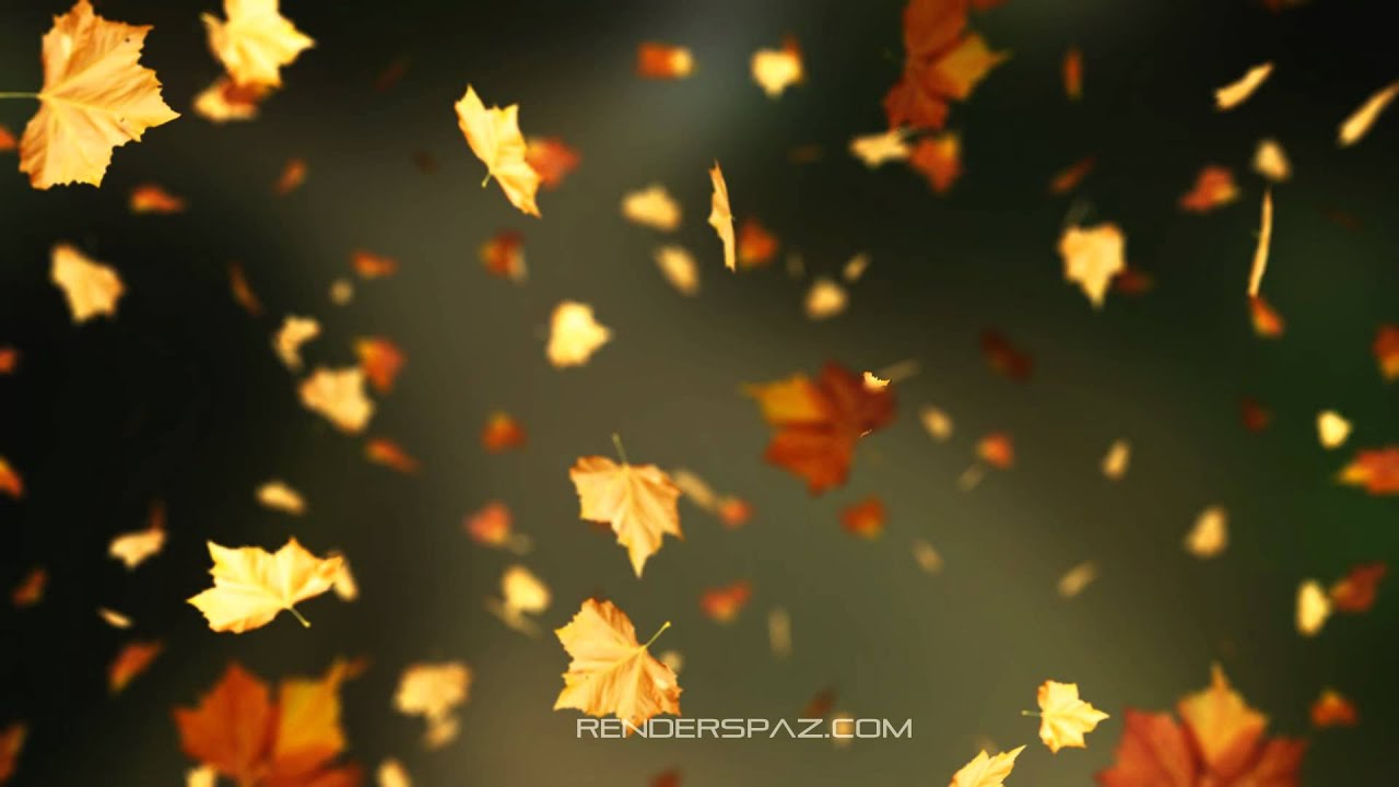 Falling Leaves Wallpaper Live Fall Animated Wallpaper Windows 8 Youtube