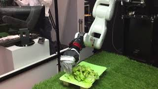 Demonstration of Multi-modal AI Robot by Denso at iRex 17 [RAW ]