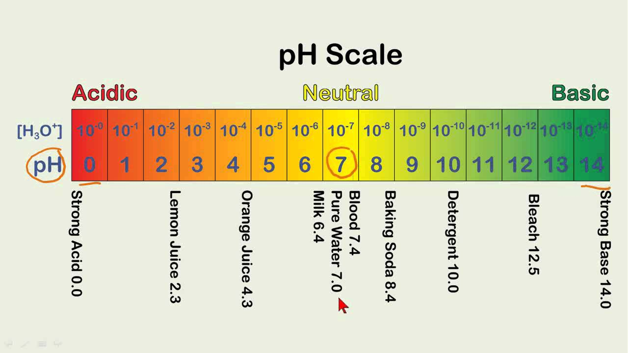 Calculating pH Values - YouTube