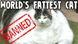 10 Banned World Records