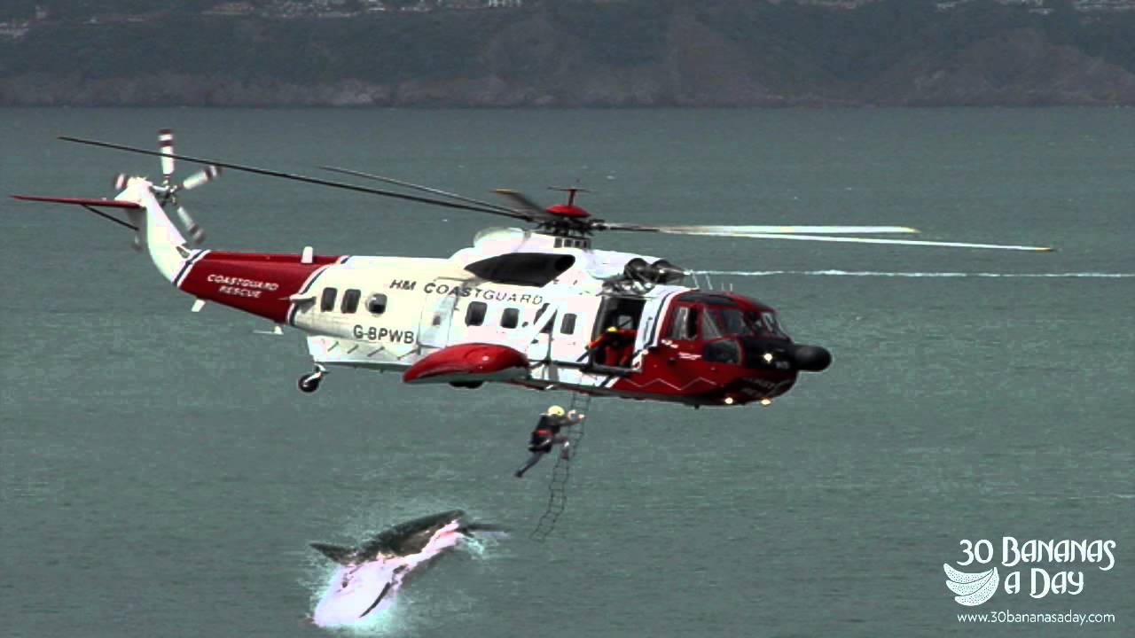 Great White Shark Jumping At Helicopter Megalodon Shark Attacks Us Navy Helicopter Off Thailand