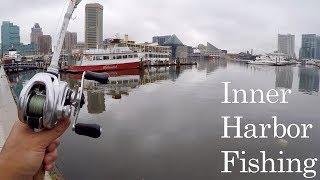 Hilarious DRUG ADDICT Stalks Me while I Fish!!! (Urban Bank Fishing at the Inner Harbor)