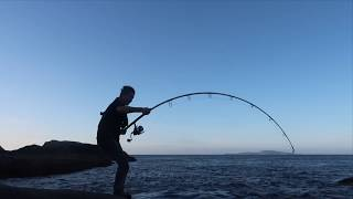 Fishing the South Coast rocks for huge fish