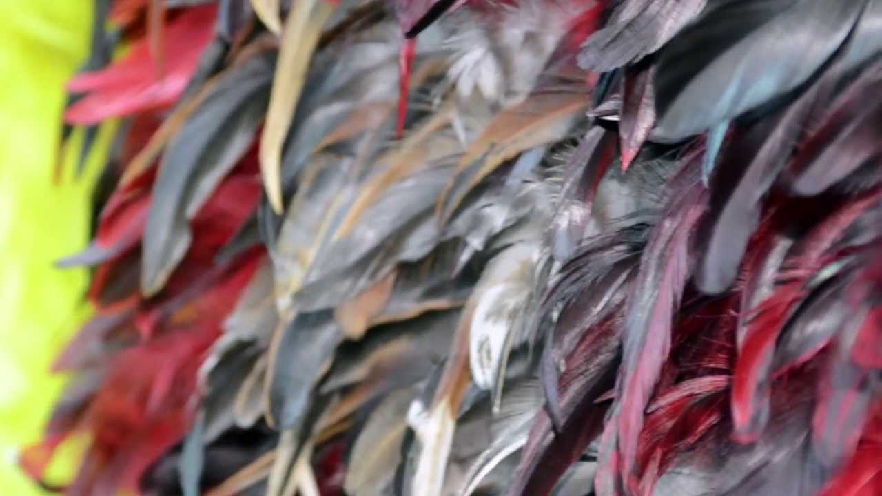 Feather Fabric Exclusive Feather Fabric By The Yard