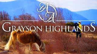 Grayson Highlands 4K | Hiking and Camping with Wild Ponies in the Mountains of Virginia