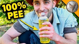 Can PEE Cure Ant Stings?!