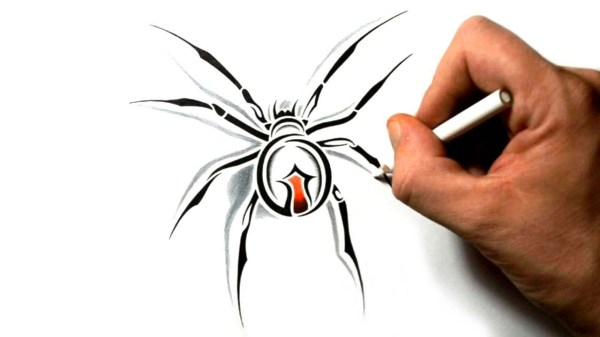 draw black widow spider