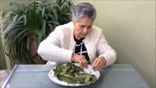 Pasiflora para nervios y estres