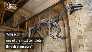 Why scan one of the most complete British dinosaurs? | Natural History Museum